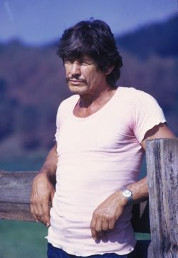 Charles Bronson photos